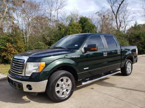 2012 Ford F-150 for sale at Houston Auto Preowned in Houston TX