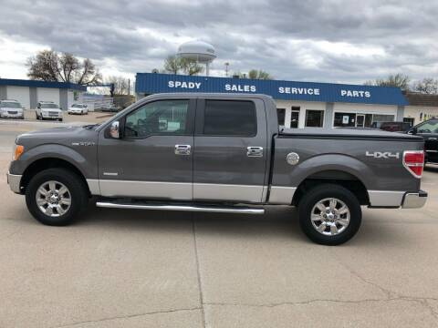 2011 Ford F-150 for sale at Spady Used Cars in Holdrege NE