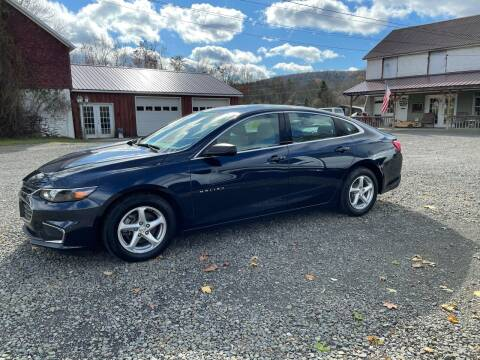 2017 Chevrolet Malibu for sale at Brush & Palette Auto in Candor NY