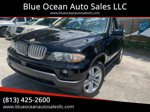 2004 BMW X5 for sale at Blue Ocean Auto Sales LLC in Tampa FL