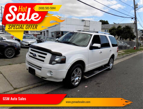 2010 Ford Expedition for sale at GSM Auto Sales in Linden NJ