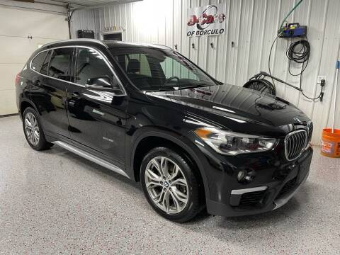 2017 BMW X1 for sale at D-Cars LLC in Zeeland MI