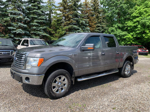 2011 Ford F-150 for sale at Renaissance Auto Network in Warrensville Heights OH