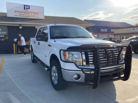 2012 Ford F-150 for sale at Princeton Motors in Princeton TX