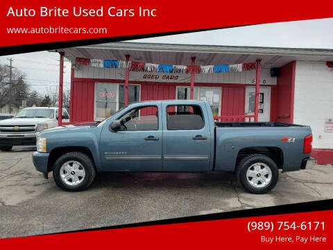 2010 Chevrolet Silverado 1500 for sale at Auto Brite Used Cars Inc in Saginaw MI