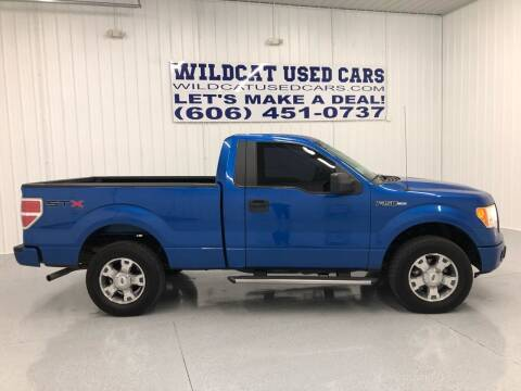 2010 Ford F-150 for sale at Wildcat Used Cars in Somerset KY