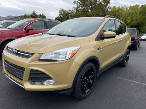 2014 Ford Escape for sale at Blake Hollenbeck Auto Sales in Greenville MI