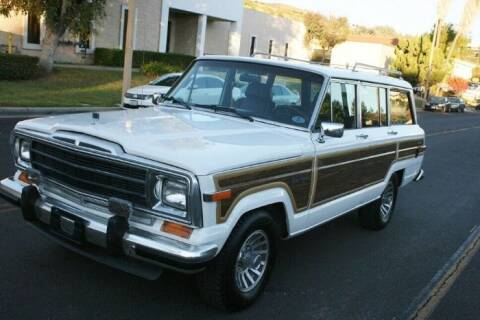 1989 Jeep Grand Wagoneer for sale at Classic Car Deals in Cadillac MI