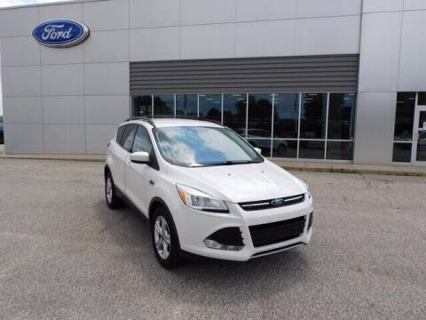 2013 Ford Escape for sale at Ray Skillman Hoosier Ford in Martinsville IN