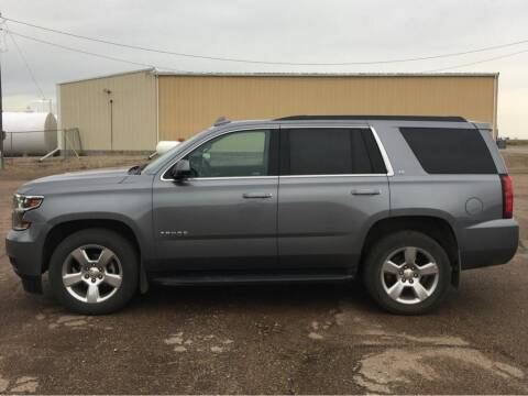 2019 Chevrolet Tahoe for sale at Willrodt Ford Inc. in Chamberlain SD