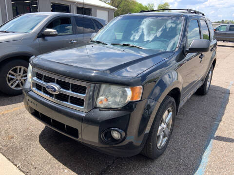 2010 Ford Escape for sale at Blake Hollenbeck Auto Sales in Greenville MI