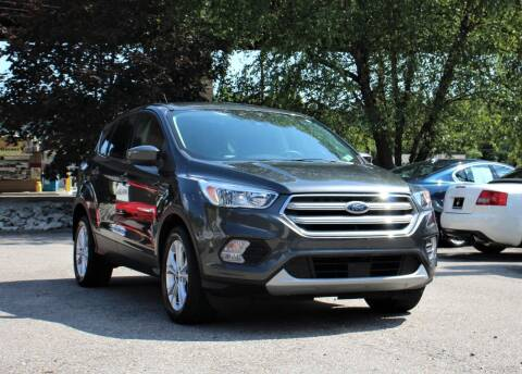 2019 Ford Escape for sale at Cutuly Auto Sales in Pittsburgh PA