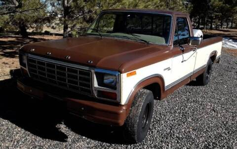 1980 Ford F-150 for sale at Classic Car Deals in Cadillac MI