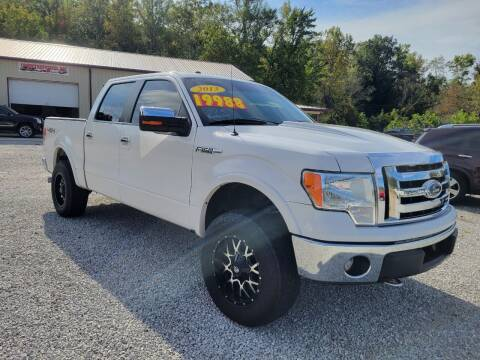 2013 Ford F-150 for sale at COOPER AUTO SALES in Oneida TN
