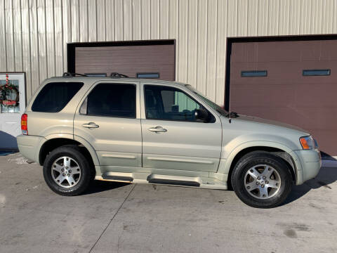 2004 Ford Escape for sale at Dakota Auto Inc. in Dakota City NE