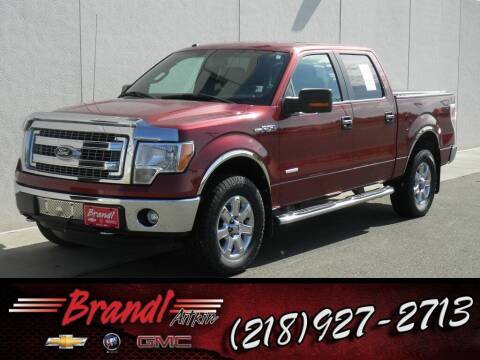 2014 Ford F-150 for sale at Brandl GM in Aitkin MN