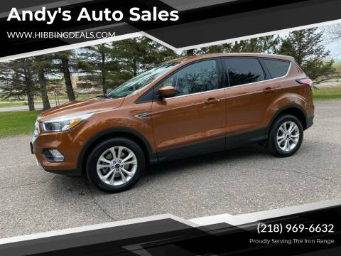 2017 Ford Escape for sale at Andy's Auto Sales in Hibbing MN