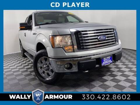 2010 Ford F-150 for sale at Wally Armour Chrysler Dodge Jeep Ram in Alliance OH