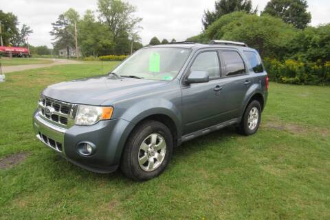 2011 Ford Escape for sale at Clearwater Motor Car in Jamestown NY