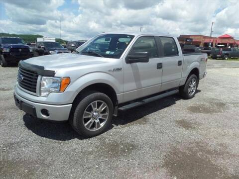 2014 Ford F-150 for sale at Terrys Auto Sales in Somerset PA