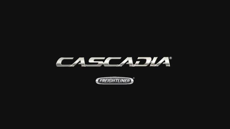 2015 Freightliner Cascadia for sale at N Motion Sales LLC in Odessa MO