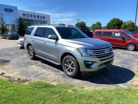 2020 Ford Expedition for sale at BORGMAN OF HOLLAND LLC in Holland MI