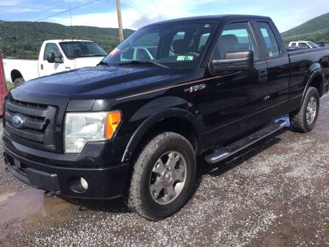 2009 Ford F-150 for sale at Troys Auto Sales in Dornsife PA