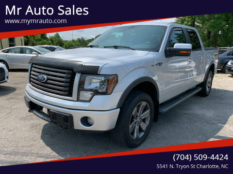 2011 Ford F-150 for sale at Mr Auto Sales in Charlotte NC