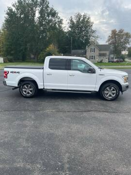 2019 Ford F-150 for sale at Austin Auto in Coldwater MI