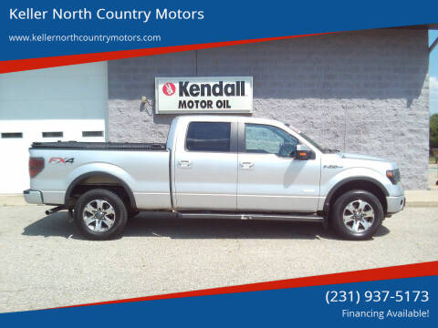 2014 Ford F-150 for sale at Keller North Country Motors in Howard City MI