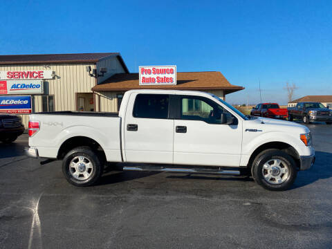 2014 Ford F-150 for sale at Pro Source Auto Sales in Otterbein IN