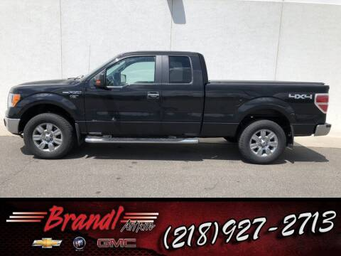 2010 Ford F-150 for sale at Brandl GM in Aitkin MN