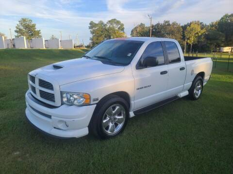 2003 Dodge Ram Pickup 1500 for sale at Lakeview Auto Sales LLC in Sycamore GA