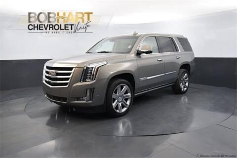 2019 Cadillac Escalade for sale at BOB HART CHEVROLET in Vinita OK