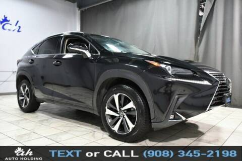 2019 Lexus NX 300 for sale at AUTO HOLDING in Hillside NJ
