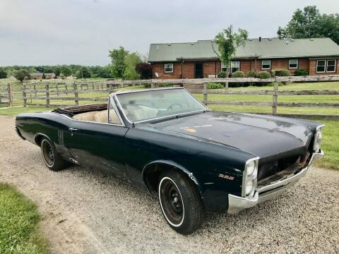 1967 Pontiac Le Mans for sale at 500 CLASSIC AUTO SALES in Knightstown IN
