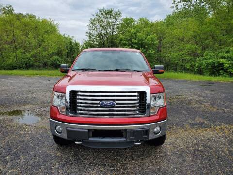 2011 Ford F-150 for sale at Discount Auto World in Morris IL