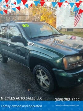 2005 Chevrolet TrailBlazer for sale at NICOLES AUTO SALES LLC in Cream Ridge NJ