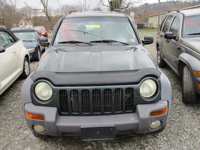 2002 Jeep Liberty for sale at FERNWOOD AUTO SALES in Nicholson PA