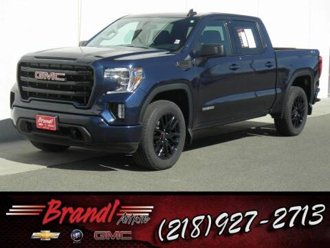 2020 GMC Sierra 1500 for sale at Brandl GM in Aitkin MN