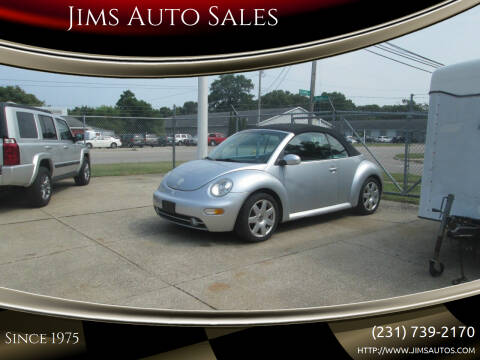 2003 Volkswagen New Beetle Convertible for sale at Jims Auto Sales in Muskegon MI