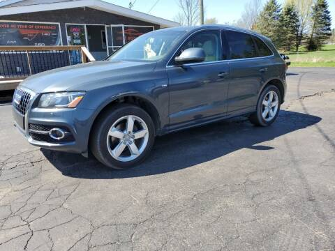 2011 Audi Q5 for sale at Drive Motor Sales in Ionia MI