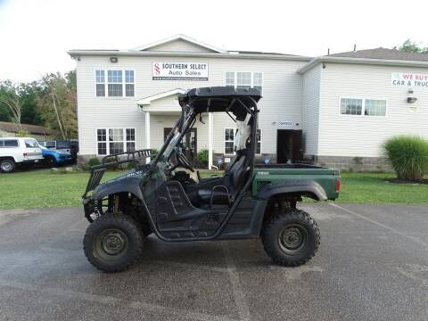 2006 Yamaha Rhino for sale at SOUTHERN SELECT AUTO SALES in Medina OH