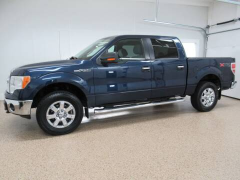 2013 Ford F-150 for sale at HTS Auto Sales in Hudsonville MI
