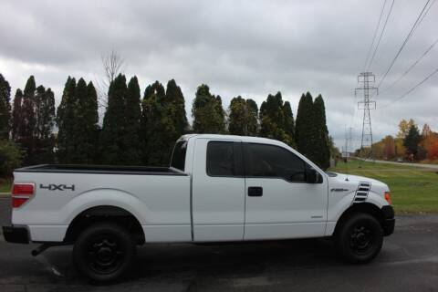 2013 Ford F-150 for sale at D & B Auto Sales LLC in Washington Township MI
