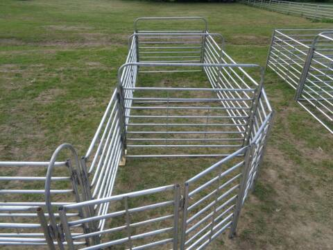 2021 Glav Cattle Working System CWSS for sale at Rod's Auto Farm & Ranch in Houston MO
