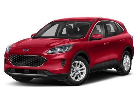2020 Ford Escape for sale at Moser Motors Of Portland in Portland IN
