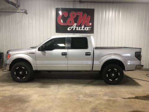 2010 Ford F-150 for sale at C&M Auto in Worthing SD