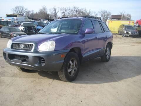 2004 Hyundai Santa Fe for sale at CARZ R US 1 in Armington IL