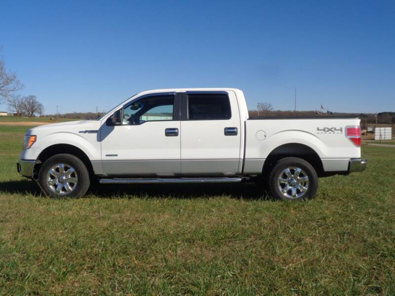 2014 Ford F-150 for sale at Rod's Auto Sales in Houston MO
